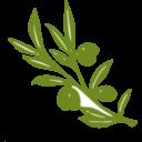 arboles-biblicos